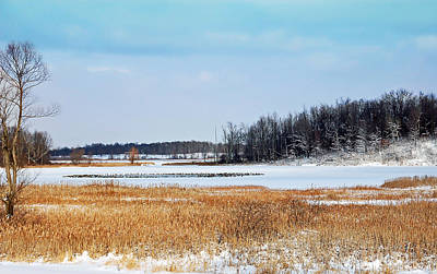 Photograph - Winter Escape by Aimee L Maher Photography and Art Visit ALMGallerydotcom