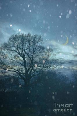 Winter Evening Art Print by Jan Bickerton