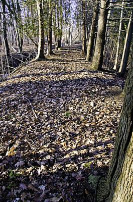 North America Photograph - Winter Fall On The Trail by LeeAnn McLaneGoetz McLaneGoetzStudioLLCcom
