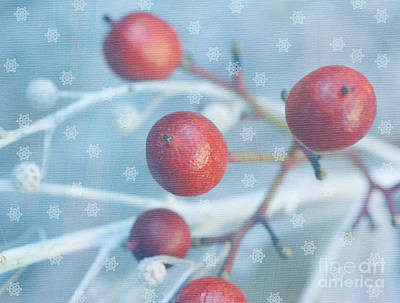 Snow Fairy Photograph - Winter Fantasy by Irina Wardas