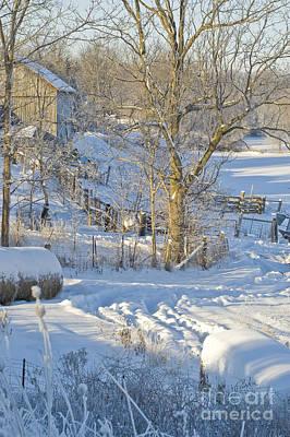 Photograph - Winter Farm II by Jessie Parker