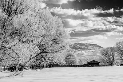 Photograph - Winter Farm by TL  Mair