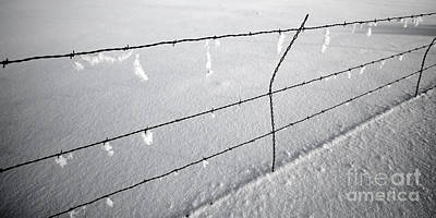 Buckaroo Photograph - Winter Fence Harney Oregon by Michele AnneLouise Cohen