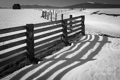 Mount Shasta Photograph - Winter Fence by Inge Johnsson