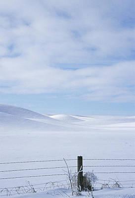 Photograph - Winter Fenceline by Doug Davidson