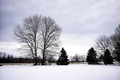 Photograph - Winter Field In Bucks County by John Rizzuto
