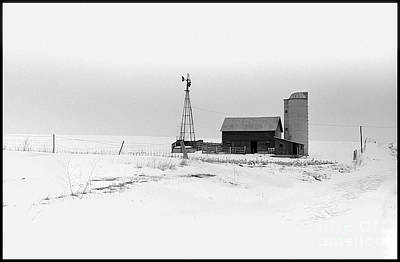 Photograph - Winter Field by Mark Avery