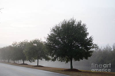 Photograph - Winter Fog by Dale Powell