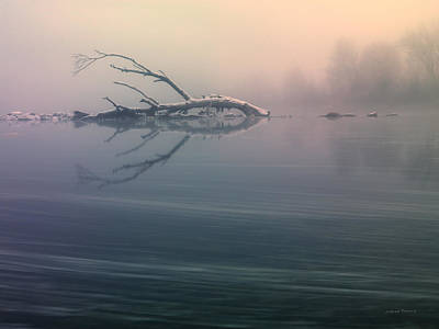 Photograph - Winter Fog by Leland D Howard