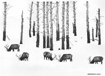 Yellowstone Drawing - Winter Forage by Paul Shafranski