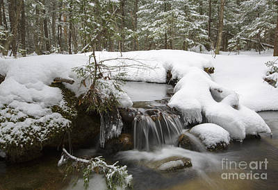 Snowy Brook Photograph - Winter Forest - Lincoln New Hampshire Usa by Erin Paul Donovan