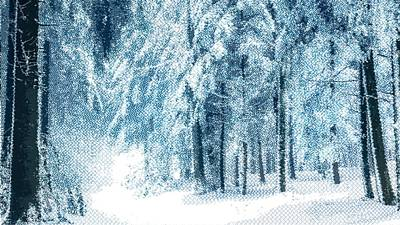 Drawing - Winter Forest - Cross Hatching by Samuel Majcen