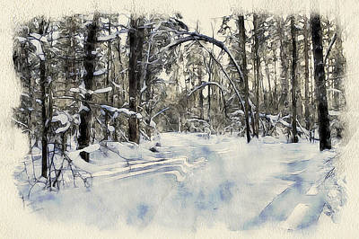 Excellent Christmas Gifts Digital Art - Winter Forest Landscape 20 by Yury Malkov