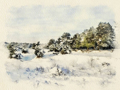 Excellent Christmas Gifts Digital Art - Winter Forest Landscape 6 by Yury Malkov