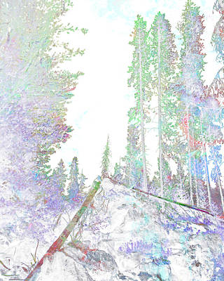Digital Art - Winter Forest Scene by John Fish