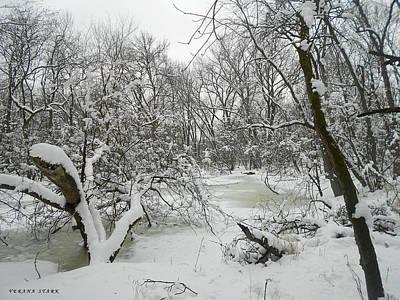 Winter Forest Series 3 Art Print