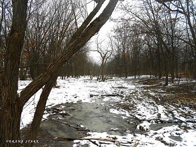 Winter Forest Series Art Print