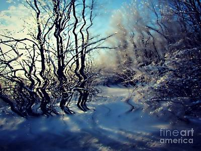 Photograph - Winter Frost by France Laliberte