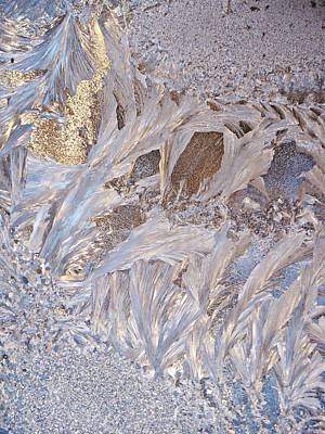 Winter Frost Tapestry Original by Joy Nichols