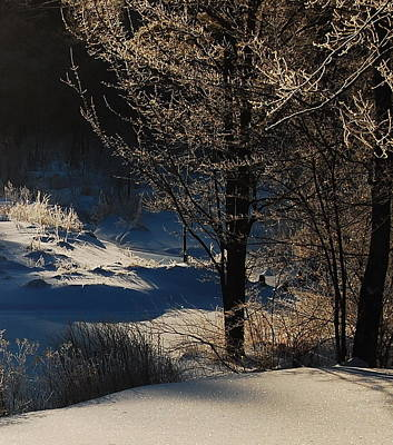 Art Print featuring the photograph Winter Glow by Mim White