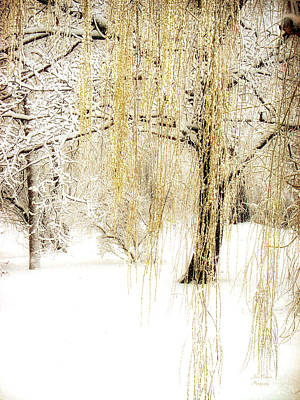 Winter Gold Art Print by Julie Palencia