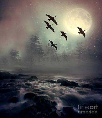 Beastie Boys - Winter Golden Hour by Andrea Kollo