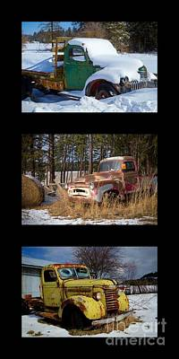 Photograph - Winter Guys by Idaho Scenic Images Linda Lantzy