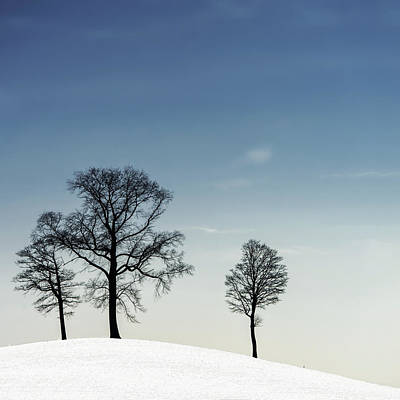 Trio Photograph - Winter Haiku by Piet Flour