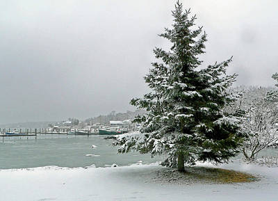 Winter Harbor Scene Art Print by Janice Drew