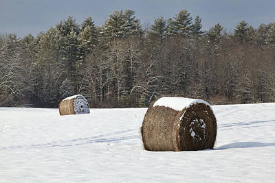 Winter Harvest Art Print by Eric Gendron