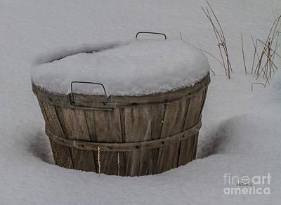 Winter Harvest Art Print by Mitch Shindelbower