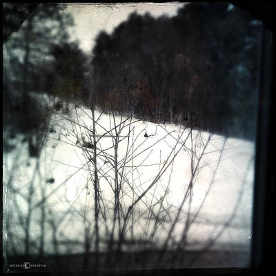 Photograph - Winter Hillside by Tim Nyberg