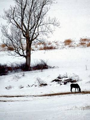 Grazing Snow Photograph - Winter Horse Pasture 1 by Janine Riley