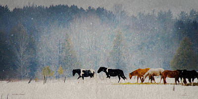 Photograph - Winter Horses by Ann Lauwers