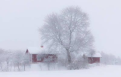 Home Photograph - Winter Idyll by Allan Wallberg