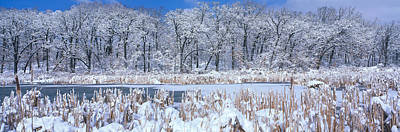 Snow-covered Landscape Photograph - Winter, Illinois, Usa by Panoramic Images