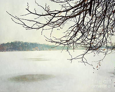 Photograph - Winter Impressions IIb by Katerina Vodrazkova