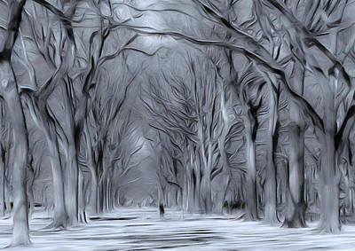 Art Print featuring the digital art Winter In Central Park by Nina Bradica