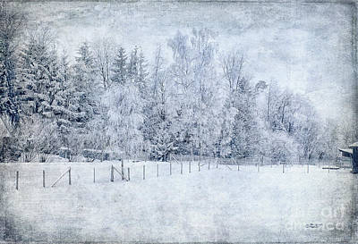 Photograph - Winter In January by Jutta Maria Pusl