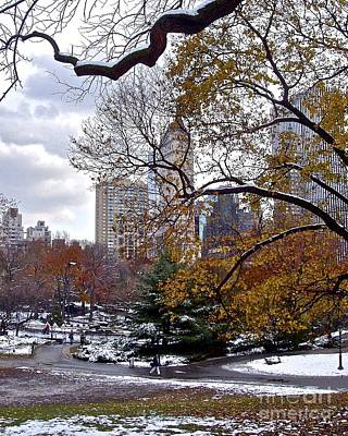 Photograph - Winter In Manhattan by Carol  Bradley