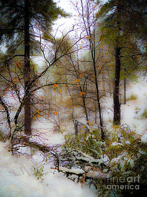 Photograph - Winter In Mt Laguna by Mickey Clausen