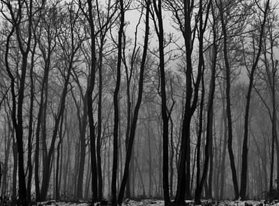 Winter In Pennsylvania Art Print by Benjamin Yeager