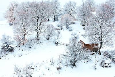 Photograph - Winter In Rhodopes  by Svetoslav Sokolov