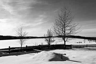 Photograph - Winter In Roztocze by Tomasz Dziubinski