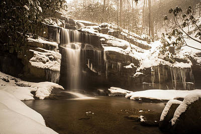 Photograph - Winter In Sepia by Joye Ardyn Durham