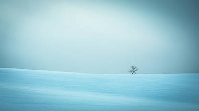 Quebec Photograph - Winter In Solitude by