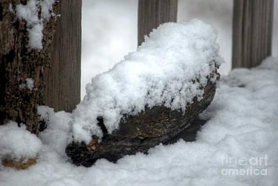 Winter In The Heartland 4 Art Print by Deborah Smolinske