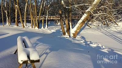 Winter In The Park Art Print