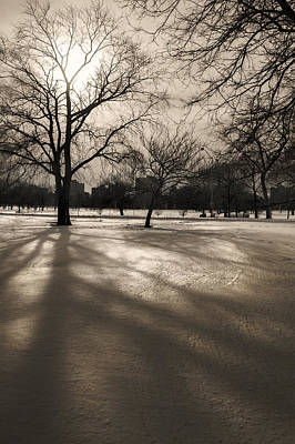 Photograph - Winter In The Park by Owen Weber