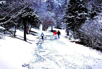 Snow Photograph - Winter In The Park by Zinvolle Art
